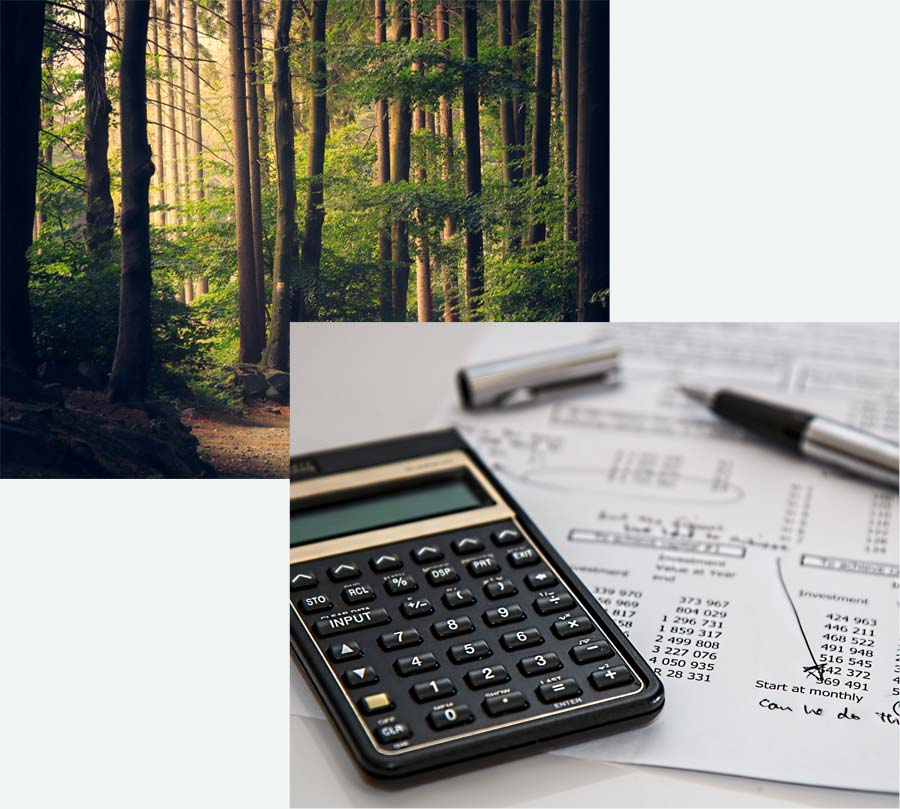 two photo collage of forrest and calculator, pen and paper with accounting numbers